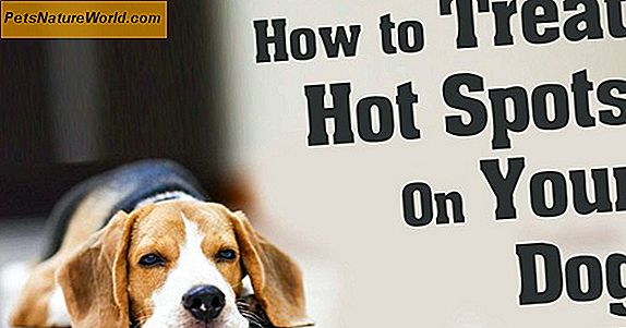 Home Remedies for Hot Dog Spots
