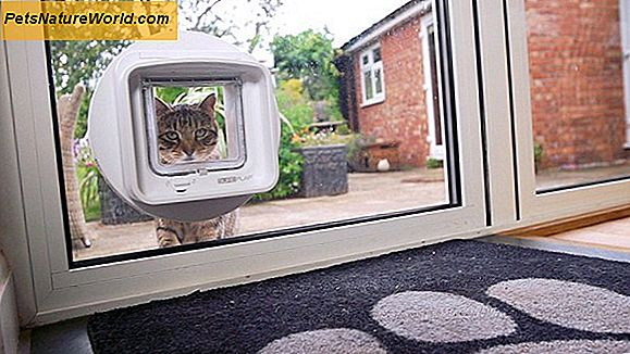 Hvordan en Microchip Cat Flap Works