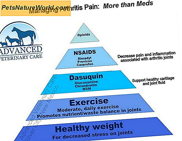 Arthritis Pain Management Guidelines